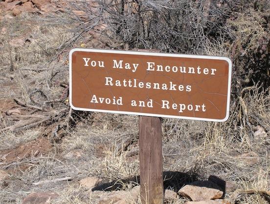 Rattlesnakes... beware<br>