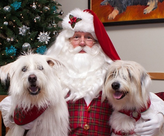Santa Bruce Lowe and his best friends<br>